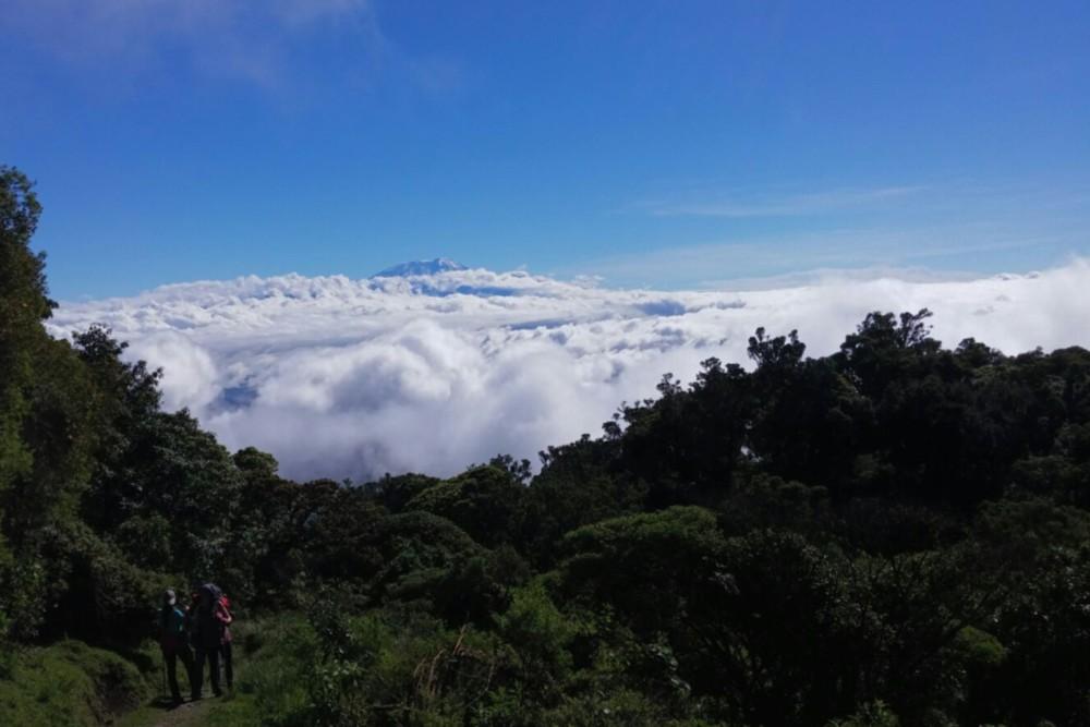 הקילימנג'רו מציץ בין העננים מהר מרו