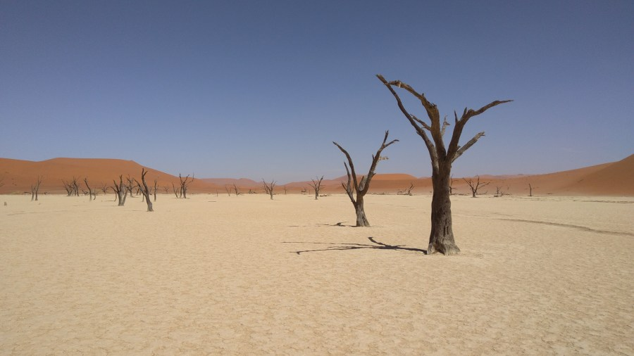 Dead Valley בנמיביה