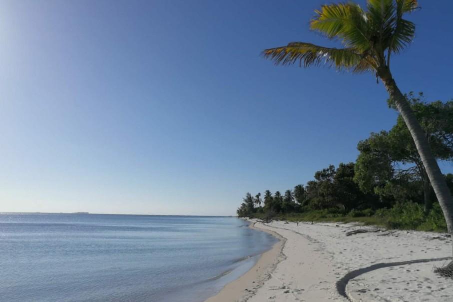 חוף באי מאפיה בטנזניה