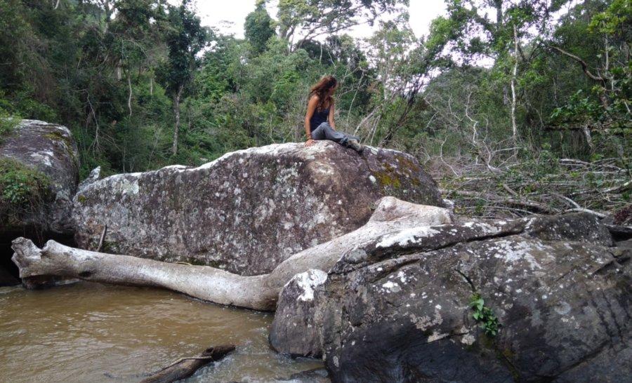 מחפשים קופים במפלי מקוזו