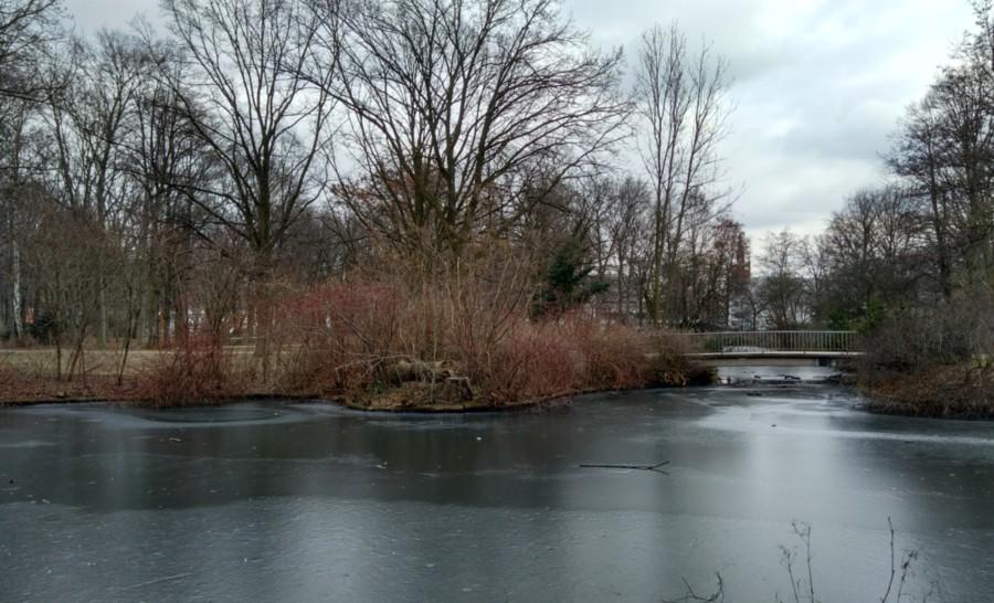 פארק בברלין