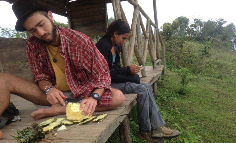 אוכלים אננס באגם בוניוני