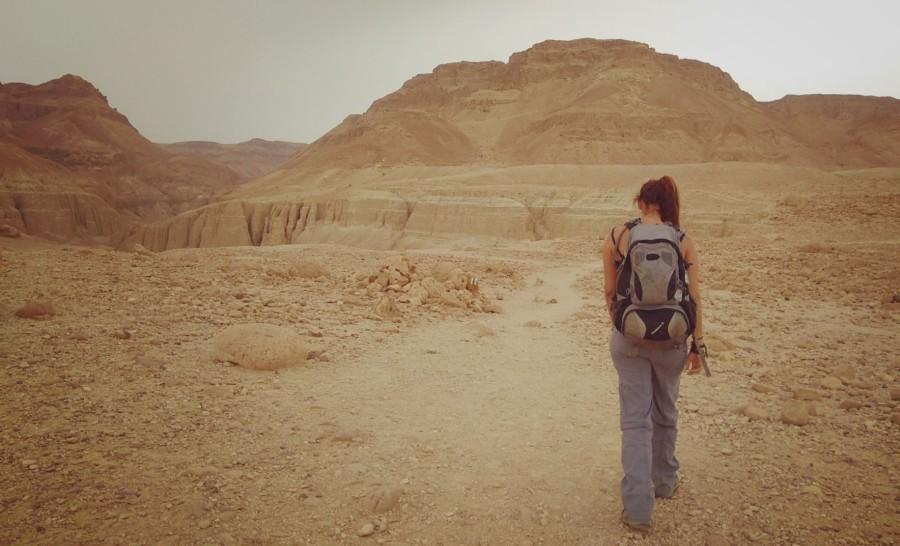 טיול במדבר בישראל - נחל צאלים