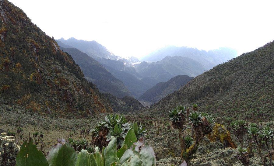 טראק הרי הרוונזורי באוגנדה