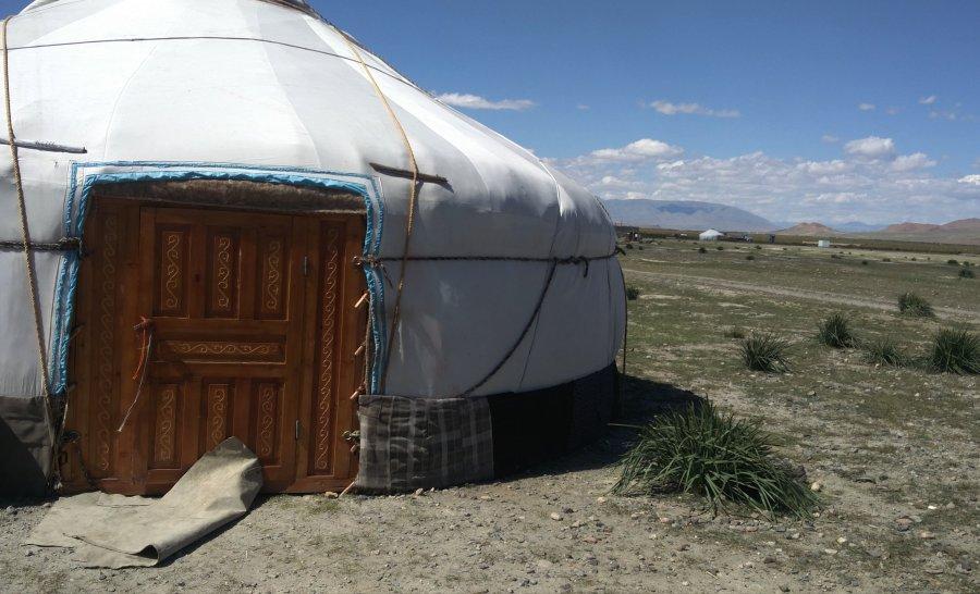 גרים בסביבות העיר אולגי במונגוליה