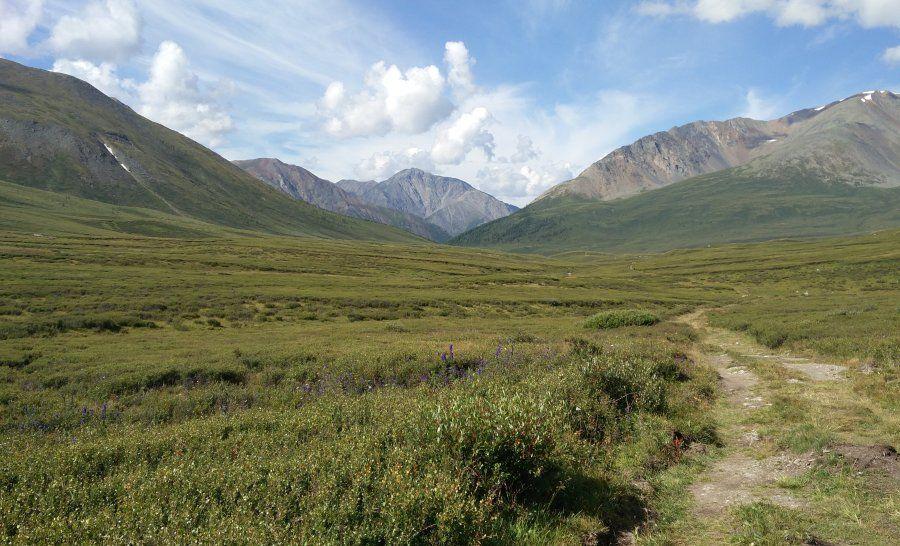 הרי האלטאי בסיביר