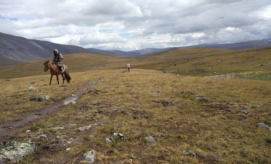 מקומי רוכב על סוס במונגוליה