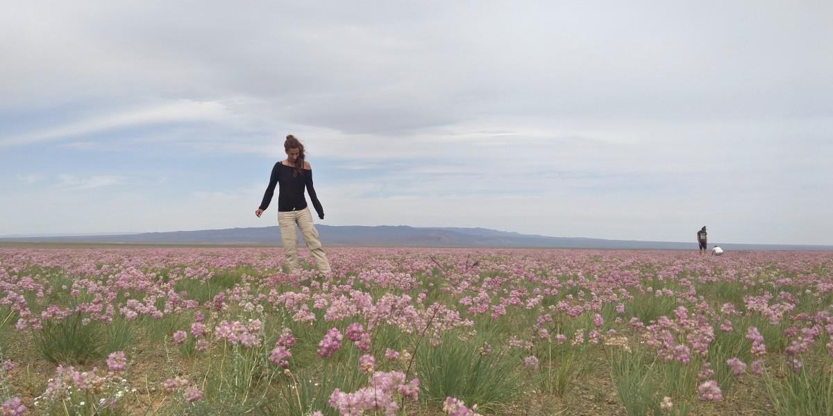 לטייל לבד במונגוליה וסיביר