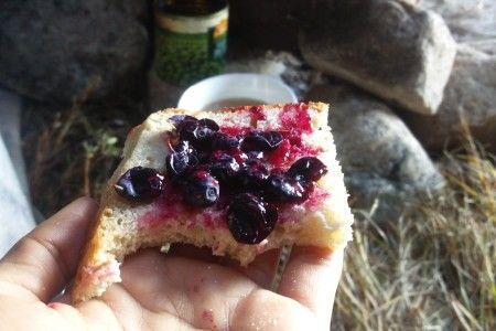 אוכלים פירות יער עם שבט איילי הצפון