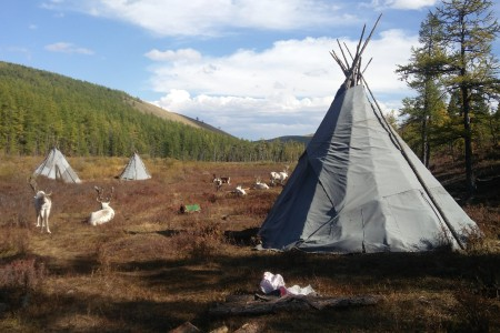 אוהל טיפי מונגולי