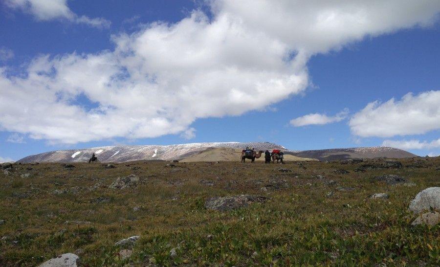 שמורת הטאבן בוגד במונגוליה