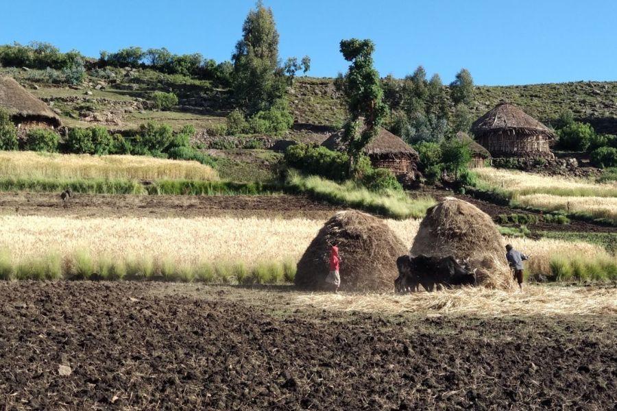 הכפרים שעוברים בהם בטראק אבונה יוסף